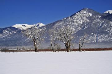 taos mountain winter