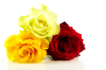 bouquet glamour roses
