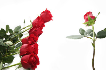 deep red roses decoration
