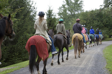 Photo sur Plexiglas Equitation horseback riding group