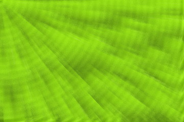 abstract green speckled background