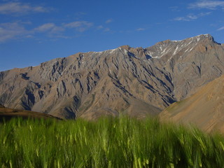 campo in montagna