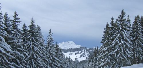 neige050