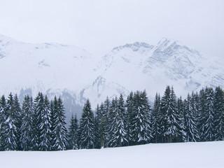 neige077