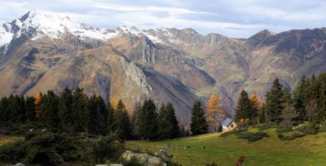 chalet forestier - im'py