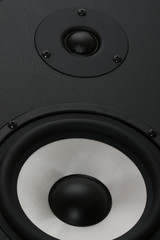 two audio speakers bass and tweeter clode up view