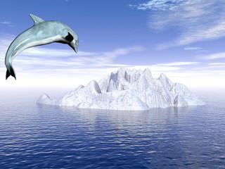 dolphin_ice