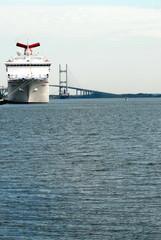 cruise ship and bridge