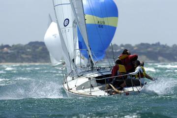 j24 sailing 01