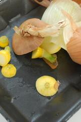 onion skin and squash