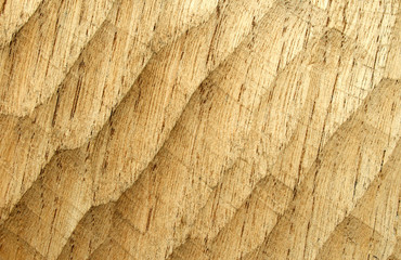 close up detail of wood grain and rings.