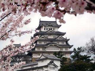 japanese castle during cherry blossom