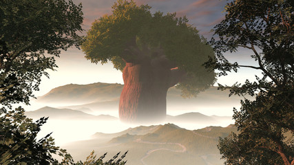 big tree in fog