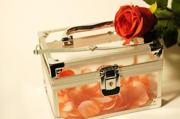 pink petals jewelry box silver bracelet white rose