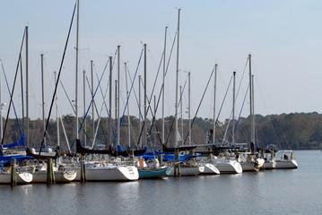 sailboats at dock