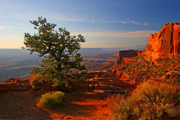 Deurstickers Bruin sunrise in canyonlands