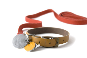 collar with tags
