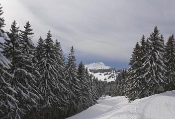 snowmount_80