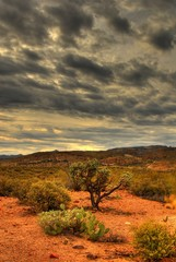 Printed roller blinds Desert desert storm approaching 23
