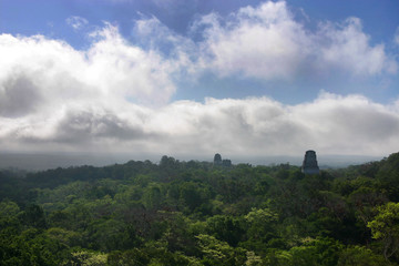 tikal at dawn