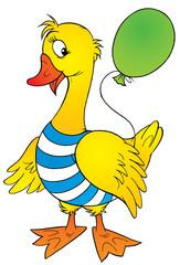 yellow goose