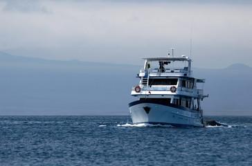 tourist cruise boat