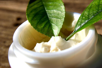 leaves in cream