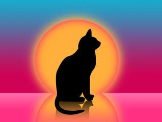 sunset and cat illustration