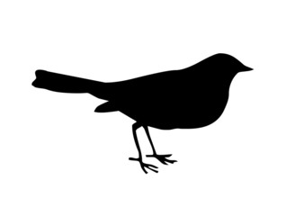 little bird black silhouette