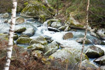 belokurikha river.