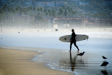 pacific surfer girl