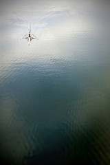 solitary rower