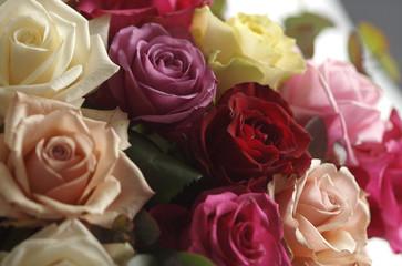 composizione di rose08