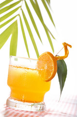 tropic drink