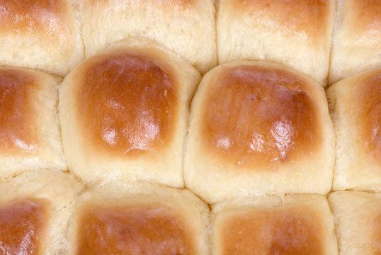 fresh rolls 2