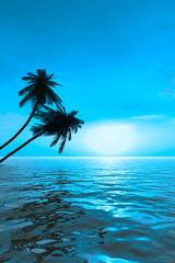 palm_sunset_vab