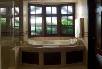 luxurious bath with window view