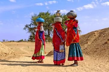 india, jaisalmer: women in the desert