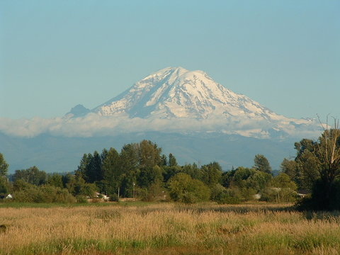 mount ranier on a clear day