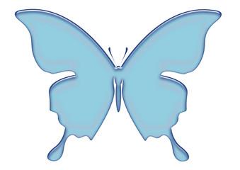 papillon bleu 4