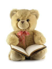 teddy bear with a book