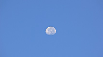 moon in summer sky