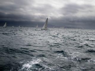 veleros en acción en plena regata