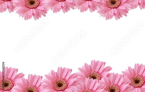 Pink flowers border stock photo and royalty free images on fotolia pink flowers border mightylinksfo Images