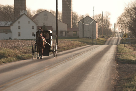 amish horse and buggy, sepia tone