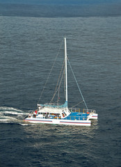 catamaran used for fishing and diving