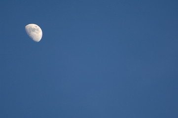 moon visible on sunny day