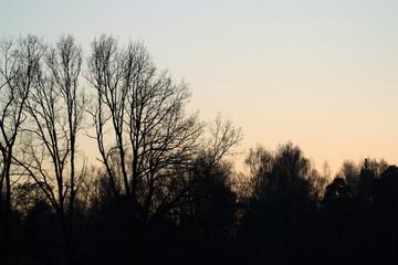 threes in twilight 3