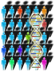 diversity and dna