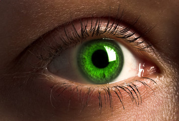 deep green human eye